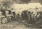 87k WW2 photo of Sd.Kfz.7